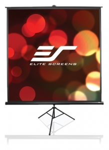 Экран Elite Screens T113NWS1